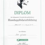 Diplom SKK uppfödarutbildning, parning och valpning