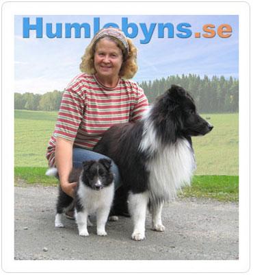 asa-humlebyns